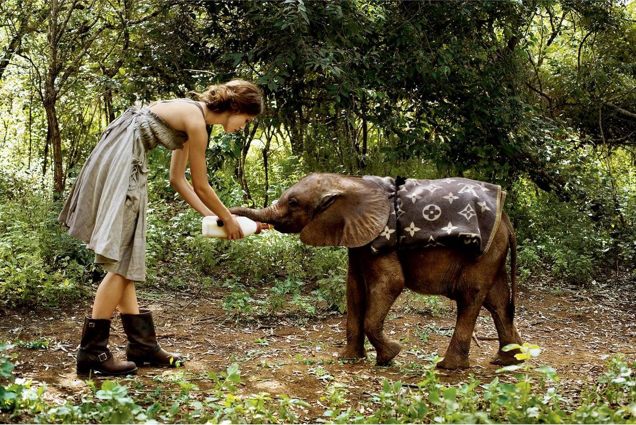 Arthur Elgort - Keira Knightley with Elephant 1