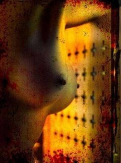 Erotic Nude 2010 - picture of breasts in front of a yellow / orange background