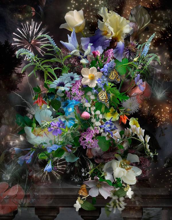 Lisa A. Frank Still-Life Photograph - Still Life with Monarchs, Photograph, Layered Flowers, Insects, Fireworks