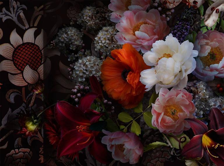 Lisa A. Frank Still-Life Photograph - William Morris Overheard, Photograph, Pink Orange White Flowers Black Background