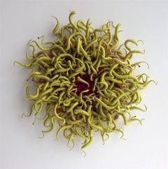 Specimen 3, Framed Green and Red Sea Nature Inspired Hand-dyed Fiber Sculpture