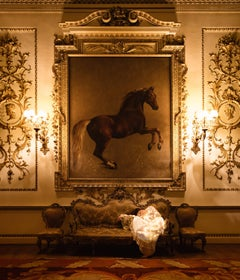 The Whistlejacket Room II, Illuminated Woman and Horse in Rich Golden Interior