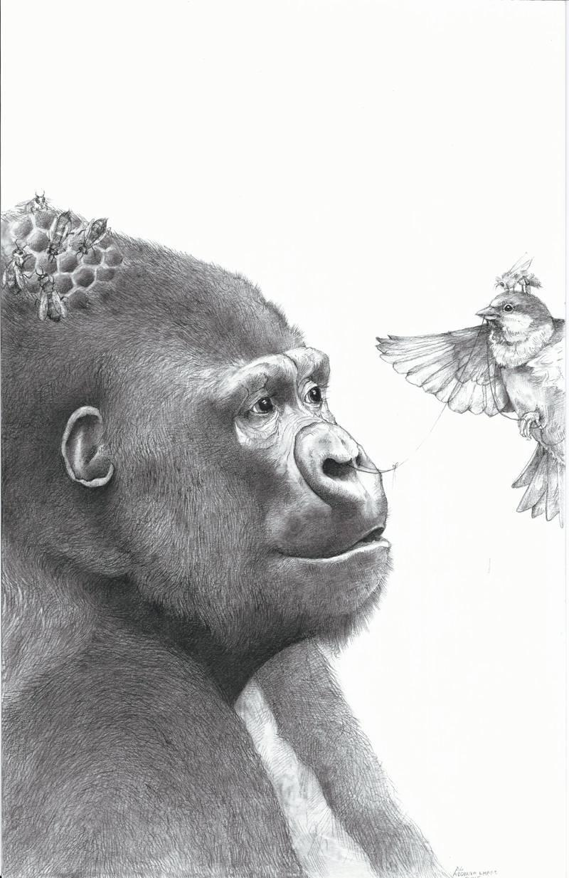 Gorilla and the Bird : A Memoir by Zack McDermott, softcover, ARC, 9/17