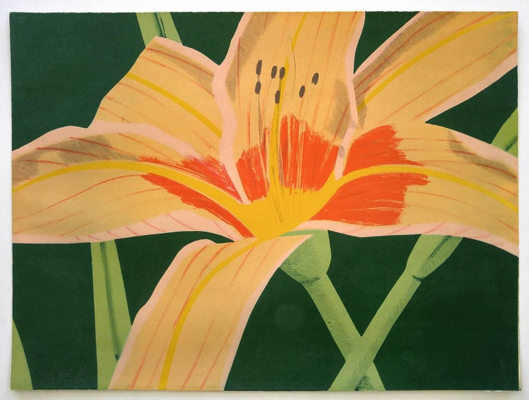 Day Lily 1,