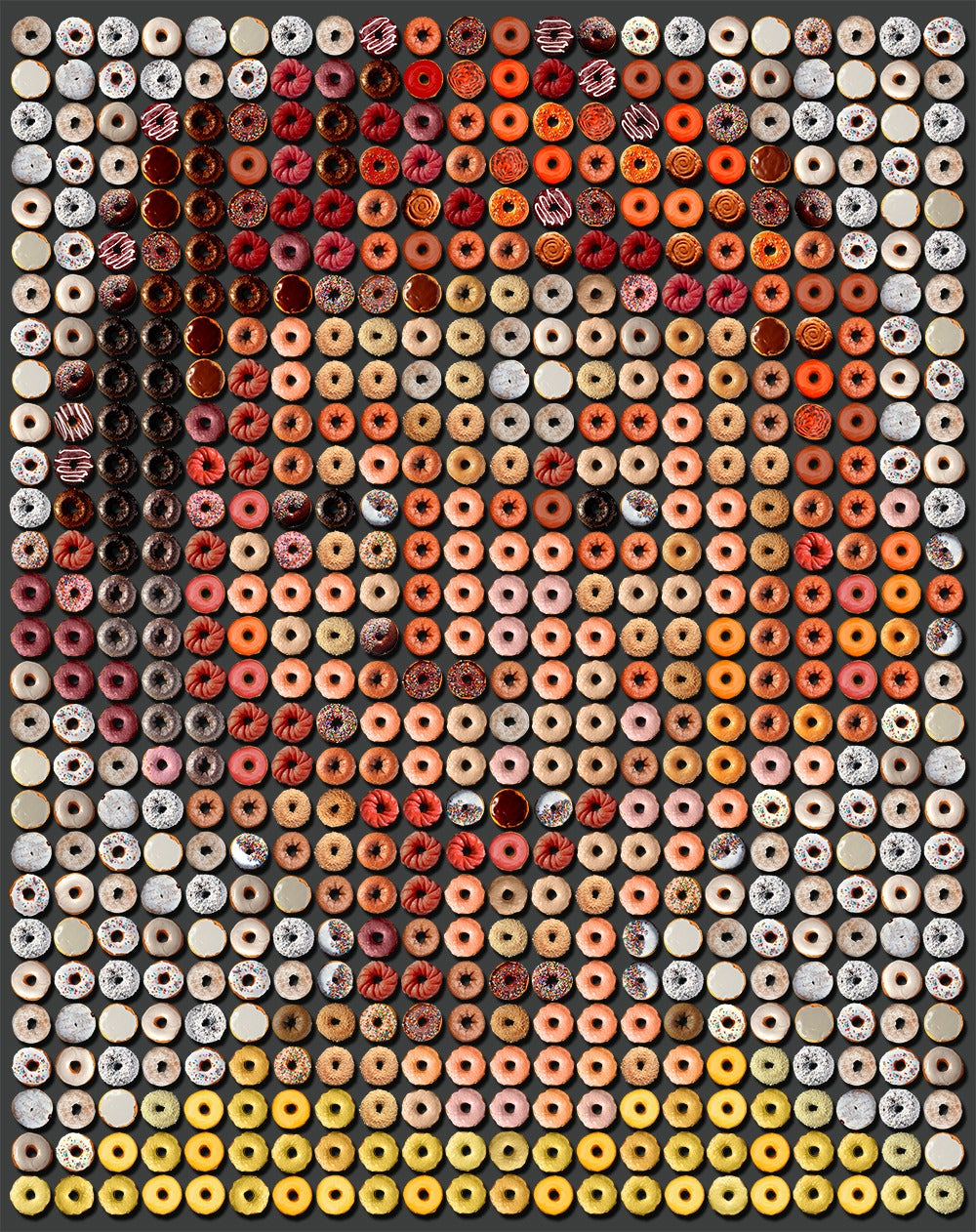 """Alfred E. Donuts"", one of a kind photographic arrangement of 616 donuts,"