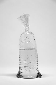 Glass Water Bag #13