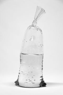 Glass Water Bag #16