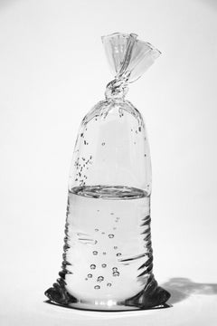 Glass Water Bag #28