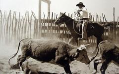 Bank Langmore - Untitled (Cowboy on Horseback)
