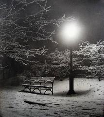 Central Park (Bench in Snow)