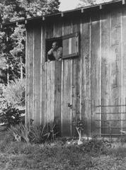 Portrait of Edward Weston