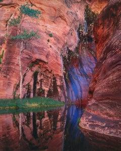 Arrowhead Pool, Seep and Cottonwood, Escalante Wilderness, Utah