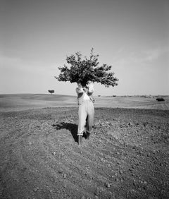 Man Acting as a Tree