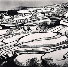 Yuanyang, Study 2, Yunnan, China