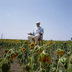 Untitled (with Remote in Sunflower Field)