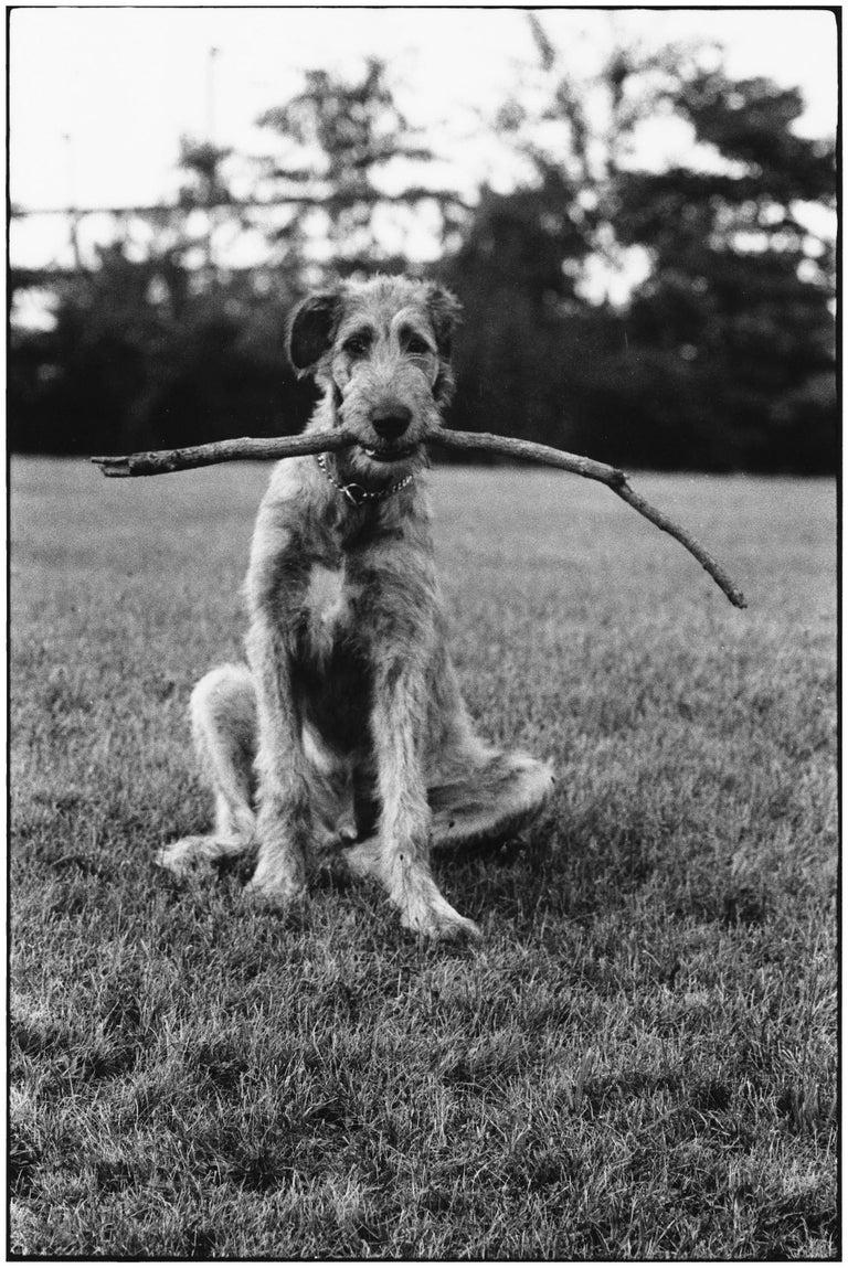 Elliott Erwitt Portrait Photograph - New Jersey