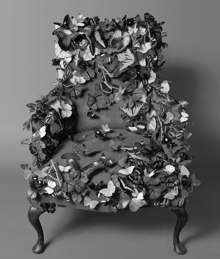 Geof Kern Black and White Photograph - Butterfly Chair (in Studio)