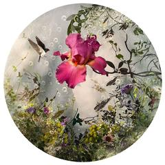 Round shape, romantic, dreamlike pink flowers and bird composition, ARCADIA