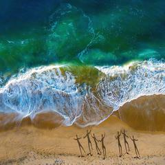 Aerial view with shadows of people walking on the beach, Montauk
