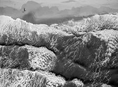 Beach photography, Black and White, Montauk, Push the Monkey