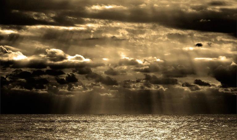 Beach Photography, Montauk, gold leaf, See in Montauk