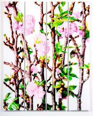 Cherry Blossom, from Design by Nature series