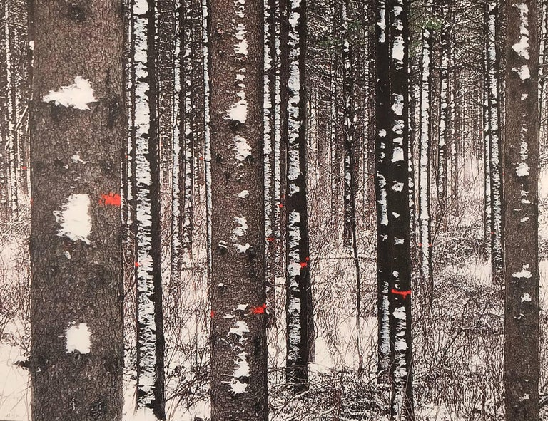 Forest with white trees, Birch forest,  - Contemporary Photograph by Albert Delamour