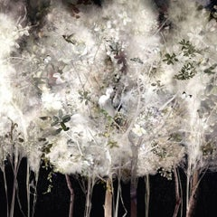 Ysabel Lemay, white feather like trees, birds and butterflies, Illuminated 2