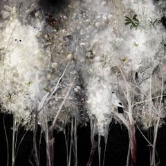 Ysabel Lemay, white feather like trees, birds and butterflies, Illuminated 1