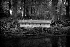 Duckweed Palace (Robert Hite B&W Photograph of Fantasy House in the Woods)