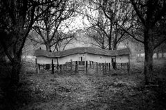 """Migration House (from Robert Hite's """"Imagined Histories"""" collection)"""