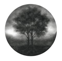 Aperture IV (Contemporary Realist Charcoal Landscape Drawing of Trees on Panel)