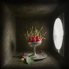 Cherries (Contemporary Still Life Study of Red Cherries in Light Box)