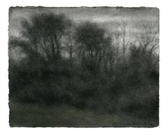 Winter View 1, Hudson: Black & White Charcoal and Green Pastel Drawing of Forest