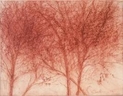 Red Trees 2 (Modern, Realistic Red Sanguine Chalk Drawing of Trees in Landscape)