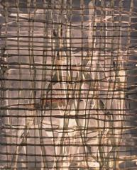 Grid No. 204 (Abstract, Experimental Photograph in Light Brown & Pale Maroon)