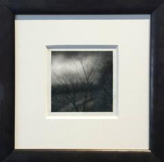 Edgeland VI (Realistic Charcoal Landscape Drawing of Rural Country Forest)