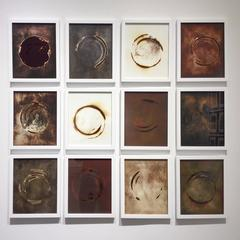Haiku Grid (12 Framed Earth-Toned Abstract Circular Images, Grid Installation)