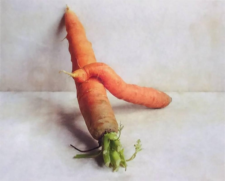 Carrots (Color Still Life Photograph of Orange Vegetable on White, Wood Frame)