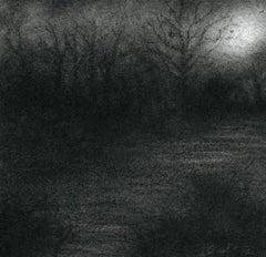 Nocturne VI (Modern Realistic Charcoal Drawing of Moonlit Forest Landscape)