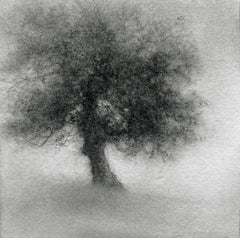 Minikin III (Modern, Small Realistic Tree Drawing on Square Wood Panel)