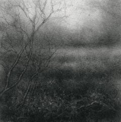 Edgeland L (Small Contemporary Realistic Landscape of Forest in Black Charcoal)