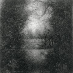 Edgeland XLVIII (Contemporary Realistic Landscape Drawing in Black Charcoal)