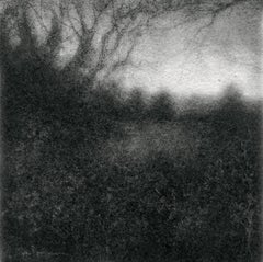 Edgeland XLIX (Modern, Realistic Square Landscape Drawing of Forest in Black)