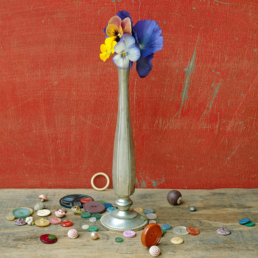 David Halliday Still-Life Photograph - Pansies and Buttons