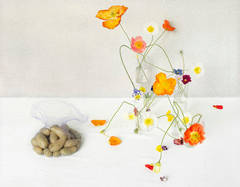 Poppies and Potatoes (Contemporary Still Life of Flowers and Potatoes)