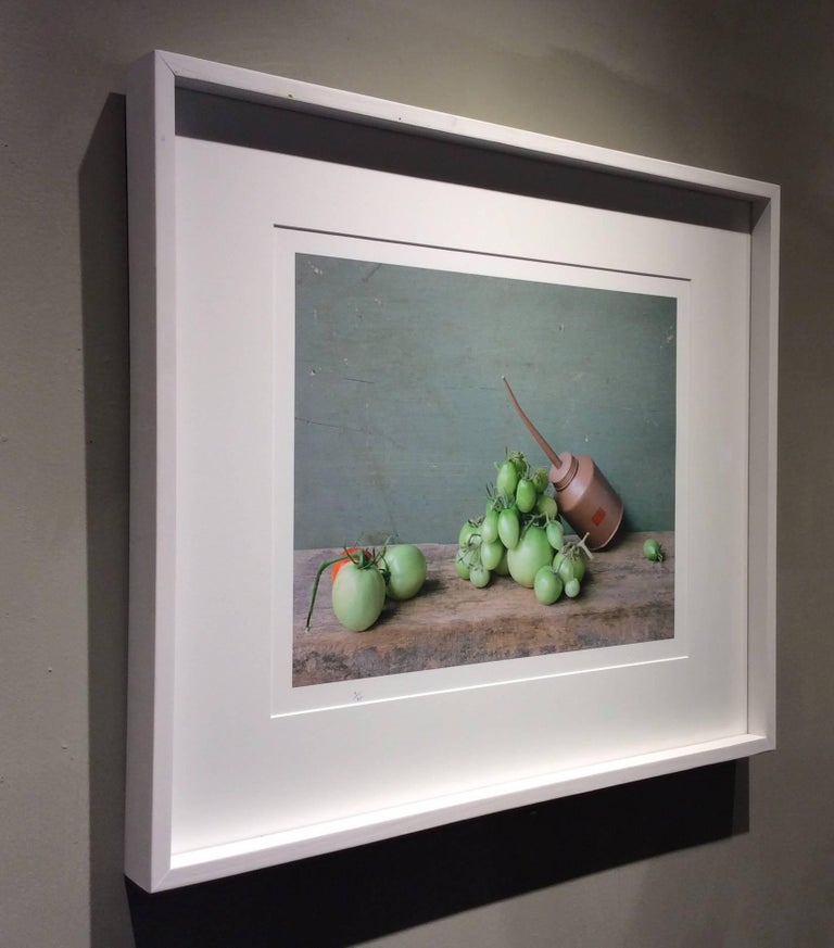 Green Tomatoes & Oil Can: Modern Still Life Photograph of Food & Objects, Framed 3