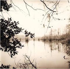 Mirrored Lake (Sepia tone Landscape Photograph taken in Louisana)