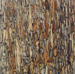 Birch 2 (Graphic Encaustic Painting with Brown Birch Bark on Wood Panel)