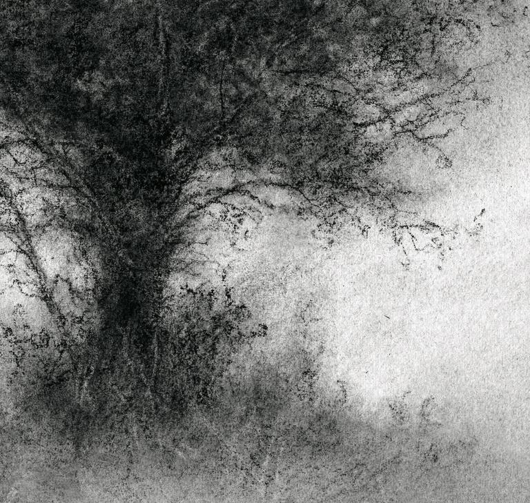 landscape charcoal sketches - photo #28